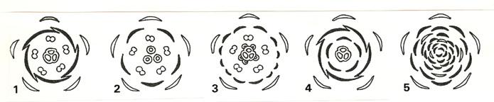 花を構成する要素 -